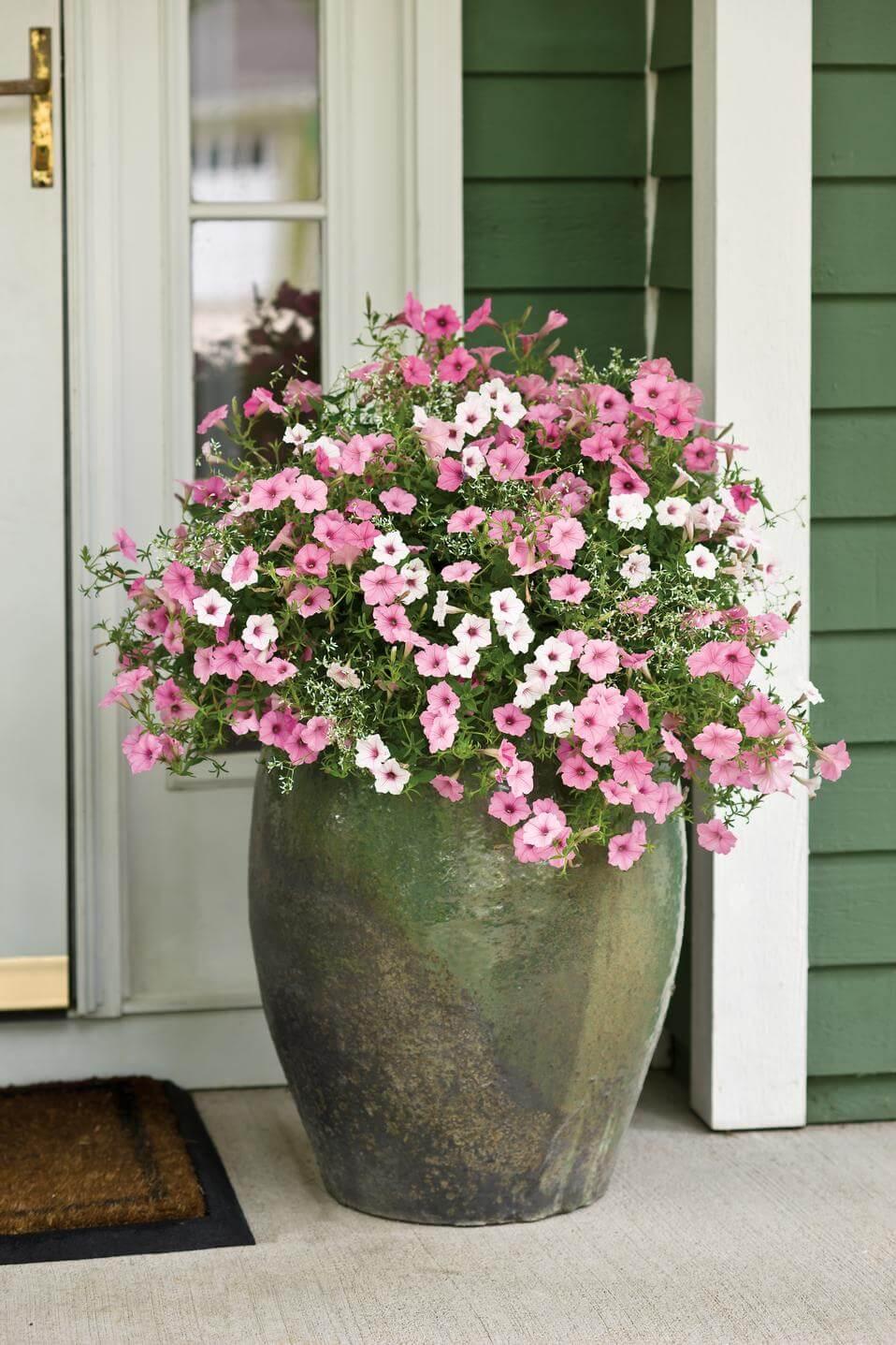 กระถางดอกไม้-8
